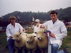 2003 group Dolwen A7, A12 & C3 pictured at Nevern show